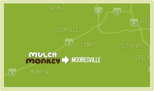 Mooresville Delivery Area